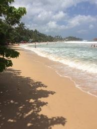 The beautiful Mirissa beach