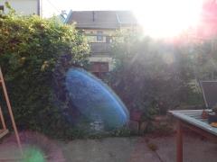 Our magical garden